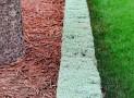 בגן הבהאי - תמונה בסידרת גבולות צולמה ע''י סמדר ברנע | מק''ט E20-1511-06-5960