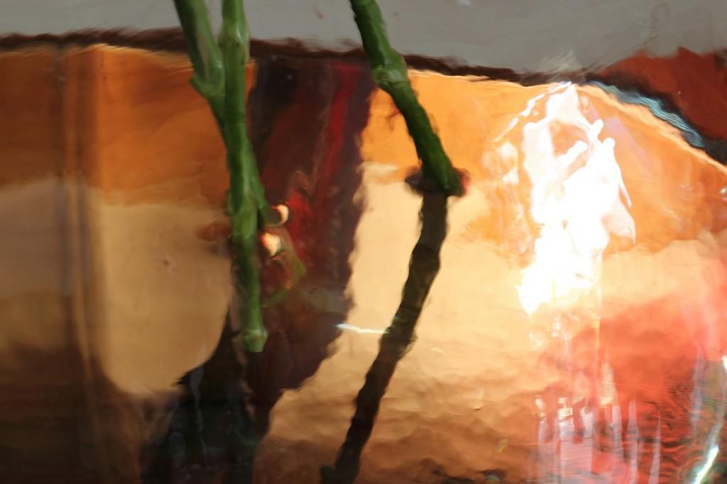 מים באגרטל פרחים | צילום סמדר ברנע | E20-120504-3541