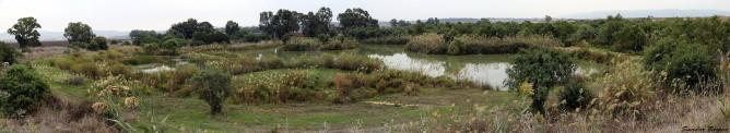 Ein Afek Panorama | photo by Smadar Barnea | E20-1511-06-5932-37